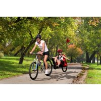 Weehoo A Tag Along For Age 3 Cycle Safely Kids And